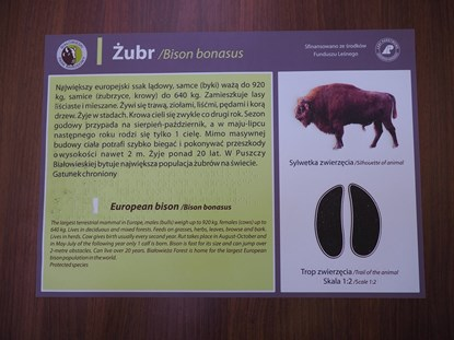 Obrazek Transparentne tabliczki informacyjne z poddrukiem